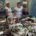 """Морето """"завря"""" от риба, цените паднаха"""